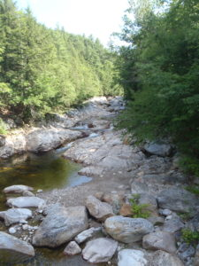 Peter Shea Vermont Trout Hikes